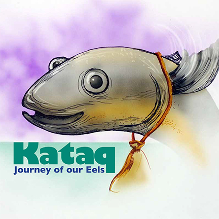 Kataq: Journey of Our Eels