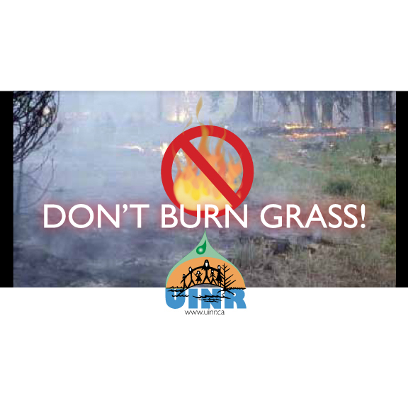 Please don't burn grass!