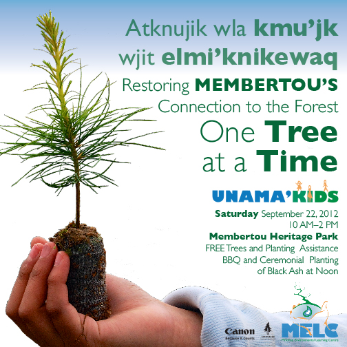 One Tree at a Time
