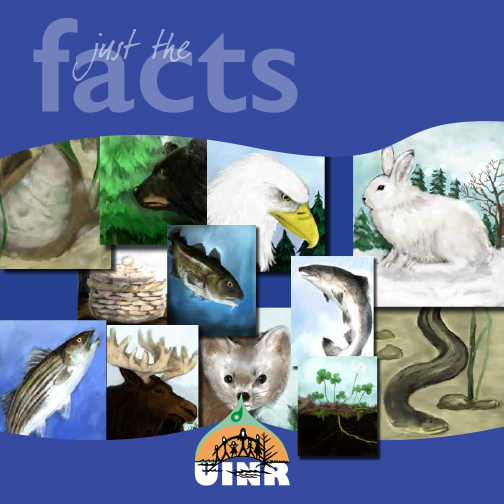 Not Just the Facts! :)
