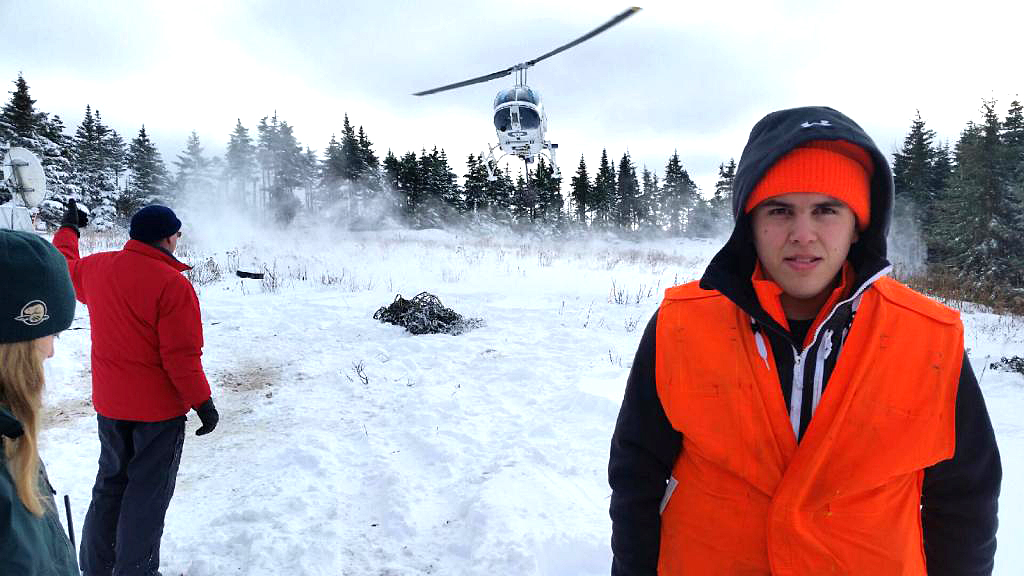 Moose Harvest in National Park Meets Goal