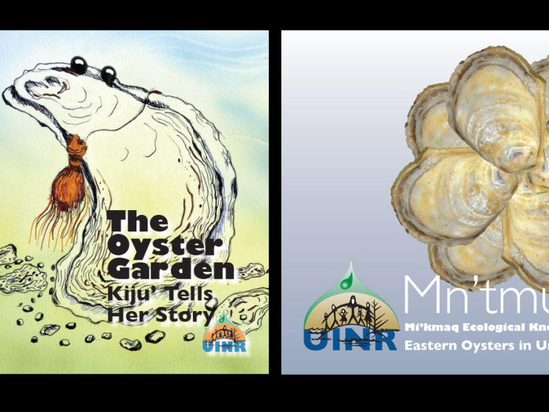 Two New Books on Oysters and Mi'kmaw Knowledge