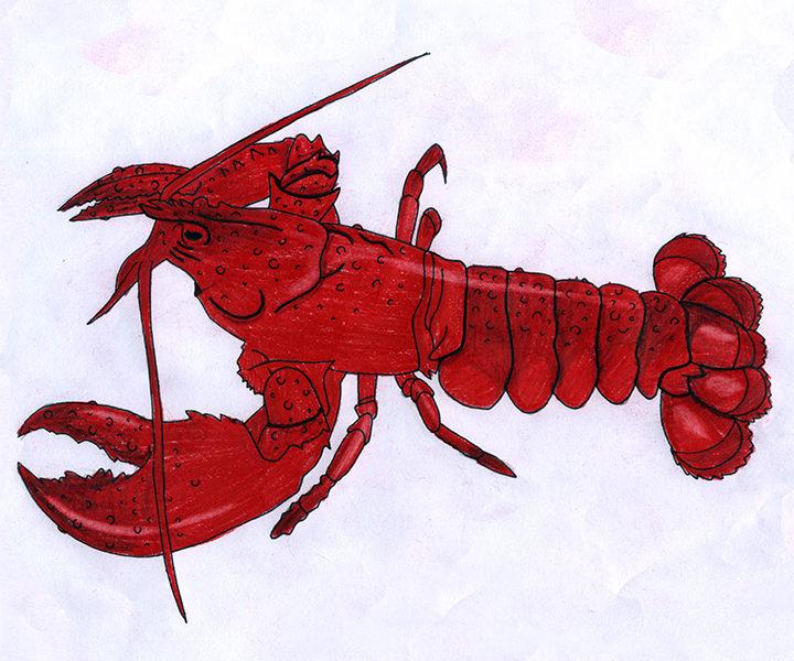 Commercial Fisheries in Unamaki: Jakejk/Lobster