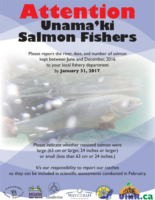 Attention Unama'ki Salmon Fishers