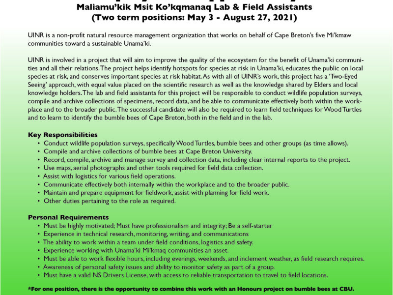 Job Opportunity: Summer lab and field positions